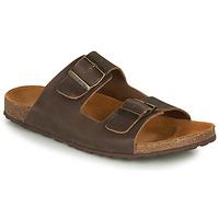 Sapatos Homem Sandálias André VISON Castanho