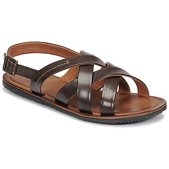 Sapatos Homem Sandálias André SOLEIL Castanho