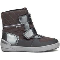 Sapatos Rapariga Botas baixas Geox JR Sleigh Girl Abx Cinzento
