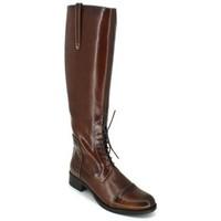 Sapatos Mulher Botas Luis Gonzalo 4932M Botas de Montar de Mujer Castanho