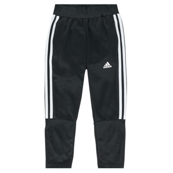 Textil Rapaz Calças de treino adidas Performance DANIELA Preto