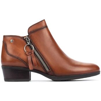 Sapatos Mulher Botins Pikolinos DAROCA W1U CUERO