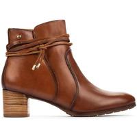 Sapatos Mulher Botins Pikolinos CALAFAT W1Z CUERO