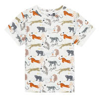 Textil Rapaz T-Shirt mangas curtas 3 Pommes ARIANE Laranja