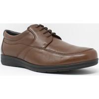 Sapatos Homem Sapatos Baerchi 3802 Marrón
