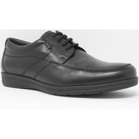 Sapatos Homem Sapatos Baerchi 3802 Negro