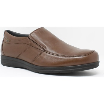Sapatos Homem Mocassins Baerchi 3800 Marrón