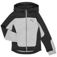 Textil Rapaz Sweats Puma EVOST HOOD JKT Cinza