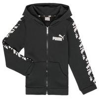 Textil Rapaz Sweats Puma AMPLI HOOD JKT Preto