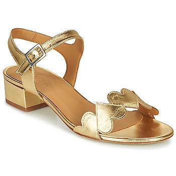 Sapatos Mulher Sandálias Emma Go POPPY Ouro