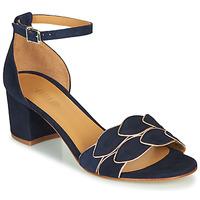 Sapatos Mulher Sandálias Emma Go ZOE Marinho