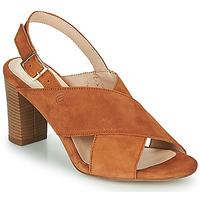 Sapatos Mulher Sandálias Betty London MARIPOL Conhaque