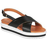 Sapatos Mulher Sandálias Betty London MAFI Preto