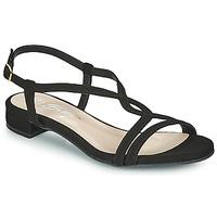 Sapatos Mulher Sandálias Betty London MATISSO Preto