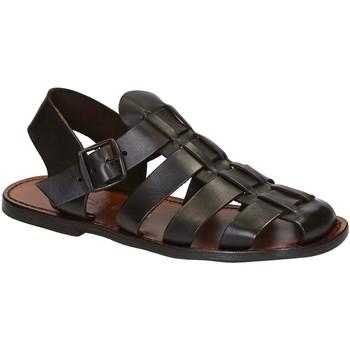 Sapatos Homem Sandálias Gianluca - L'artigiano Del Cuoio 502 U MORO CUOIO Testa di Moro