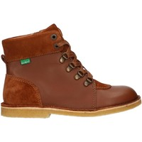 Sapatos Criança Botas baixas Kickers 736370-30 KICK HOOD Marr?n