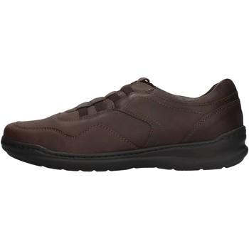 Sapatos Homem Sapatilhas Braking - Slip on  testa di moro 6459 MARRONE
