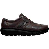 Sapatos Homem Sapatilhas Joya DAVID M BROWN