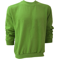 Textil Homem Sweats Anvil 71000 Maçã Verde