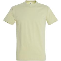 Textil Homem T-Shirt mangas curtas Sols 11500 Sábio Verde