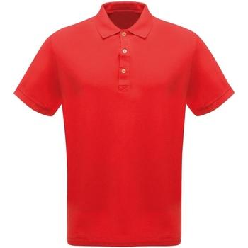 Textil Homem Polos mangas curta Regatta  Vermelho clássico