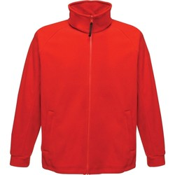 Textil Homem Casaco polar Regatta  Vermelho clássico
