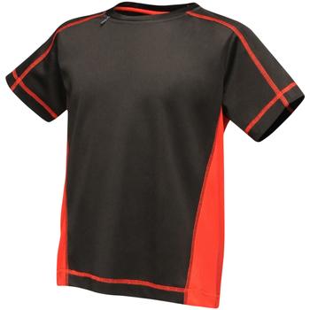Textil Criança T-Shirt mangas curtas Regatta RA001B Preto/Vermelho Clássico