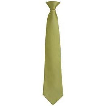 Textil Homem Gravatas e acessórios Premier PR785 Relva