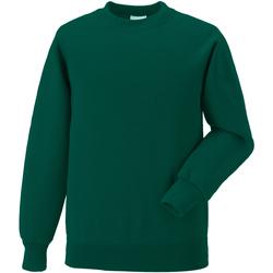 Textil Criança Sweats Jerzees Schoolgear 7620B Garrafa Verde