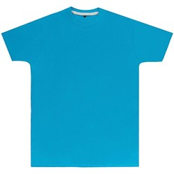 Textil Homem T-Shirt mangas curtas Sg Perfect Turquesa