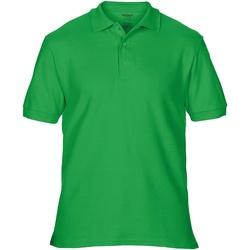Textil Homem Polos mangas curta Gildan Premium Verde Irlandês