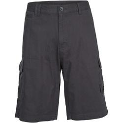 Textil Homem Shorts / Bermudas Trespass Rawson Carvão vegetal