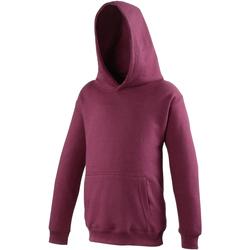 Textil Criança Sweats Awdis JH01J Borgonha