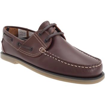 Sapatos Homem Sapato de vela Dek  Couro Marrom