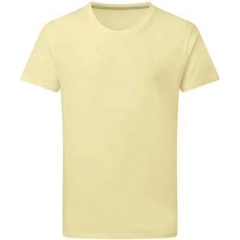 Textil Homem T-Shirt mangas curtas Sg Perfect Flor de Anis