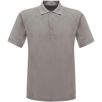 Textil Homem Polos mangas curta Regatta RG524 Cinza Prata