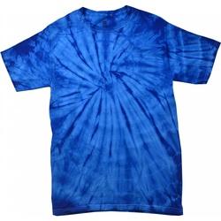 Textil T-Shirt mangas curtas Colortone Tonal Aranha Real