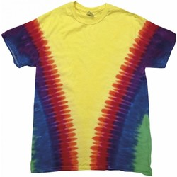 Textil T-Shirt mangas curtas Colortone TD05M Arco-íris Vee