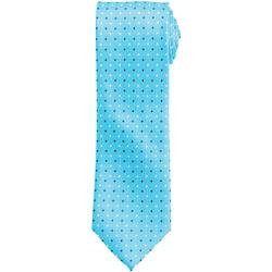 Textil Homem Gravatas e acessórios Premier Squares Turquesa