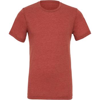 Textil Homem T-Shirt mangas curtas Bella + Canvas CA3413 Clay Triblend