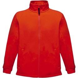 Textil Homem Casaco polar Regatta TRF532 Vermelho clássico
