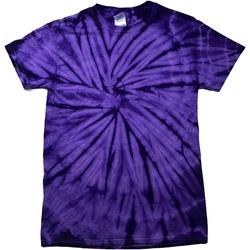 Textil Criança T-Shirt mangas curtas Colortone Spider Aranha Púrpura