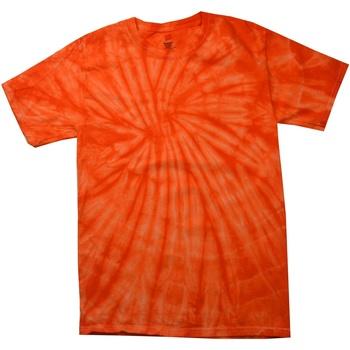 Textil Criança T-Shirt mangas curtas Colortone Spider Laranja Aranha