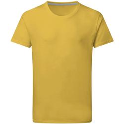 Textil Homem T-Shirt mangas curtas Sg Perfect Girassol