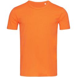 Textil Homem T-Shirt mangas curtas Stedman Stars Morgan Abóbora