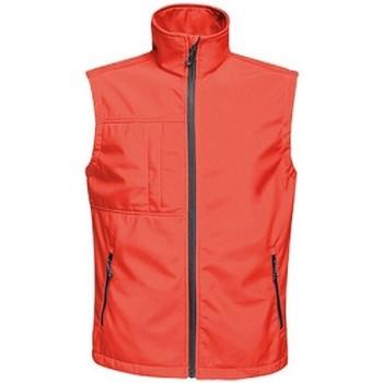 Textil Homem Casacos de malha Regatta TRA848 Clássico vermelho/preto