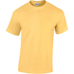 Textil Criança T-Shirt mangas curtas Gildan 5000B Risco Amarelo