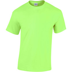 Textil Criança T-Shirt mangas curtas Gildan 5000B Verde Casa da Moeda