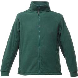 Textil Homem Casaco polar Regatta TRF532 Garrafa Verde