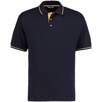 Textil Homem Polos mangas curta Kustom Kit KK606 Marinha/amarelo sol